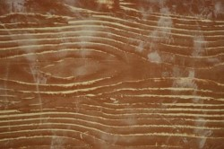 Выравнивание древесины шпаклевкой
